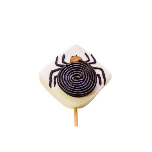 DISPLAY 15 Brochettes Spider 40g